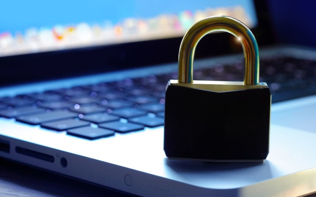 The Importance of Data Privacy in Digital Marketing