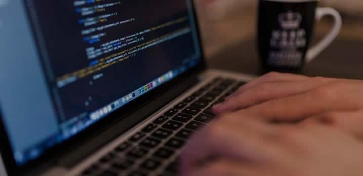 Our website development services